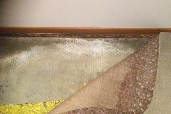 Residential Water Damage Repair 1